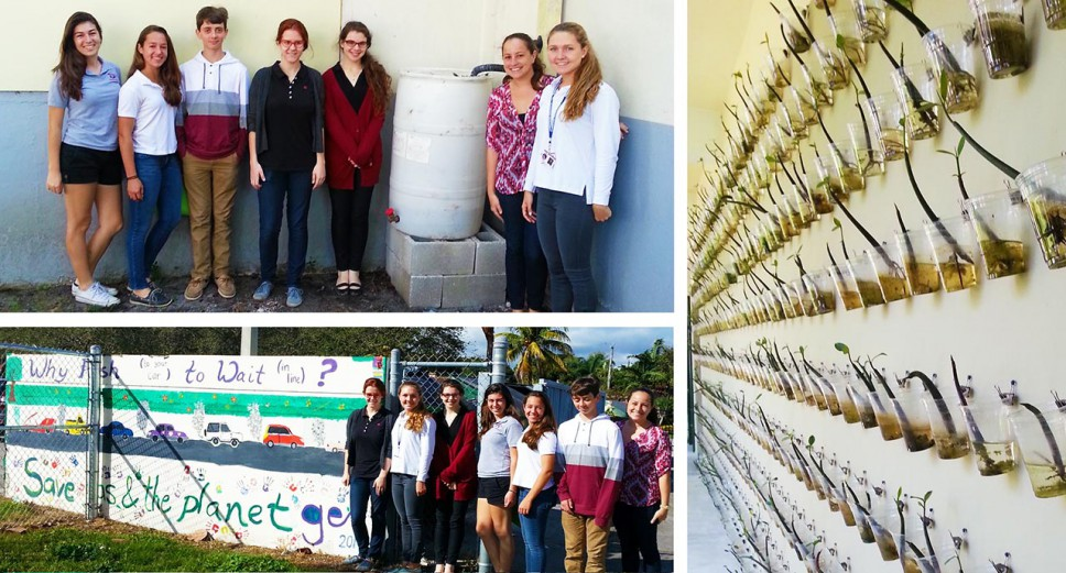 Students Focus on Environmental Stewardship Activities