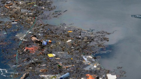 """brixham harbour,""""Great Pacific Garbage Patch"""" or """"Eastern Garbage Patch"""" circles there which is a huge carpet of rubbish of more"""
