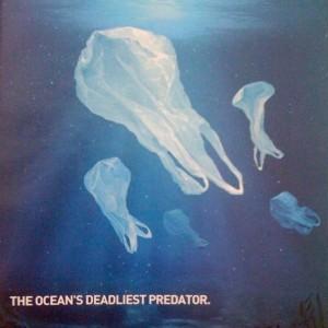 Plastic Bags in Ocean
