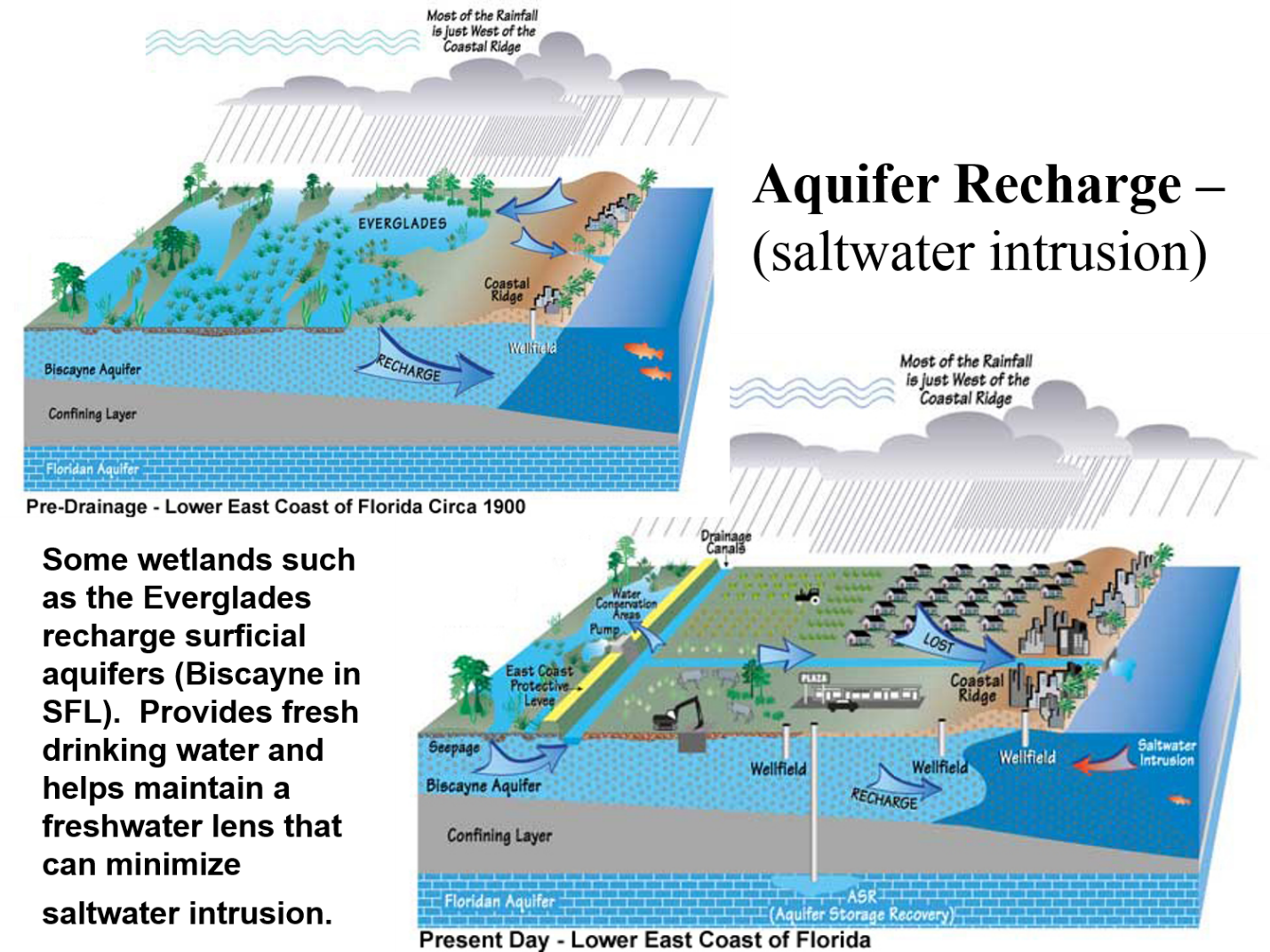 the composition importance and ecosystem of water in our planet Abiotic factors include things such as rocks,water,soil,light,etc the idea of the  ecosystem relates to the idea that all organisms in the environment are engaged   and the substances of their material composition remain after death to be  utilized in other ways  it provides important nutrients for the plants in an  ecosystem.