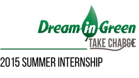 summer internship image