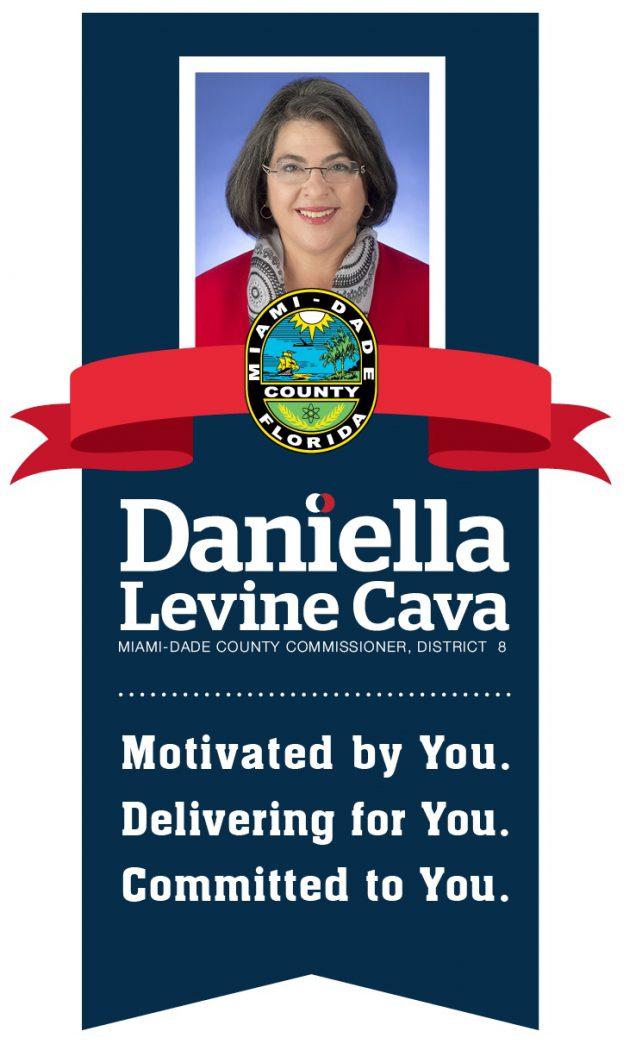 Levine Cava Ribbon Graphic (003)